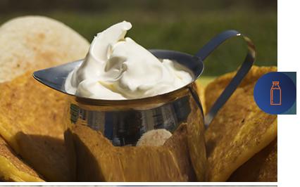 jarra de nata criolla